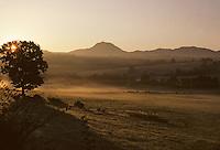 Europe/France/Auvergne/63/Puy-de-Dôme/Parc Naturel Régional des Volcans/Monts Dômes: Le Puy-de-Dôme à l'aube