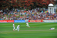 Action from day one of the 2nd cricket test match between the New Zealand Black Caps and Sri Lanka at the Hawkins Basin Reserve, Wellington, New Zealand on Saturday, 3 February 2015. Photo: Dave Lintott / lintottphoto.co.nz