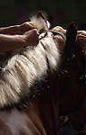 Braiding a horses' mane
