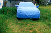 USA, California, Mendocino,blue car cover on car in yard