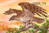 Kayomi, REALISTIC ANIMALS, paintings, eagle, USKH79,#A# realistische Tiere, realista, illustrations, pinturas