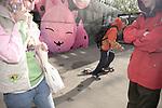 oleg,18 ans, jeune skateur  dans une usine réhabilité en temple fashion réunissant designers et graffeur //// Oleg, 18, young skater in a rehabilitated factory in a fashion temple gathering designers and graffiti artist