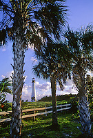 Cape Florida Lighthouse sits in the distance with Palm trees in the foregroAund, Cape Florida Light, Key Biscayne State Park, Dade County, Florida