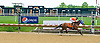 Letheruckustart winning at Delaware Park on 5/20/15