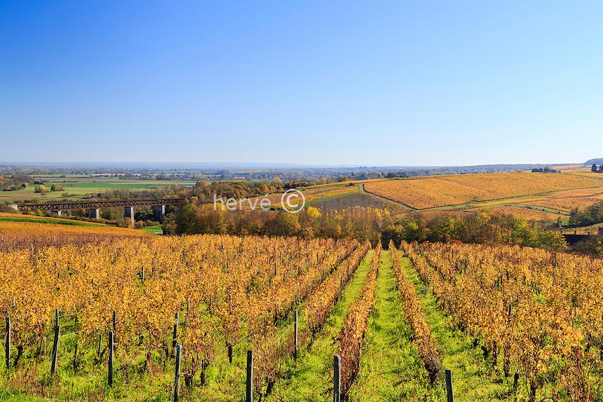 France, Cher (18), région du Sancerrois, Sancerre, le vignoble en automne et le viaduc de l'ancienne voie ferrée // France, Cher, Sancerrois region, Sancerre, the vineyard fall