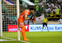PALMIRA - COLOMBIA, 02-05-2018: Fernando Monetti (Der) arquero de Atlético Nacional en acción durante el encuentro con Deportivo Cali por la fecha 14 de la Liga Águila II 2017 jugado en el estadio Palmaseca de la ciudad de Palmira. / Fernando Monetti (R) goalkeeper of Atletico Nacional in action during the match against Deportivo Cali for the date 14 of the Aguila League II 2017 played at Palmaseca stadium in Palmira city.  Photo: VizzorImage/ Nelson Rios / Cont