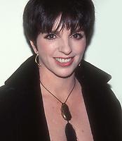 Liza Minnelli 1991<br /> Photo By Adam Scull/PHOTOlink.net