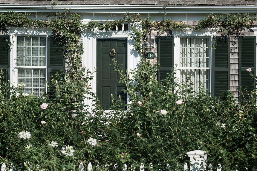 Charming New England rose garden and house, Cape Cod, Massachusetts, USA.