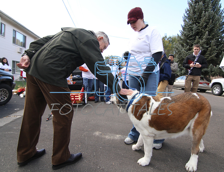 Senate Majority Leader Harry Reid pets Karla Fisher's dog Fumble before the Nevada Day parade on Saturday, Oct. 30, 2010, in Carson City, Nev. .Photo by Cathleen Allisonz