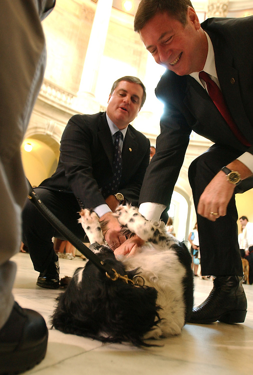 "Sens. George Allen, R-Va., right, and Mark Pryor, D-Ark., play with Capitol Police Dog ""Sammy"", before a hearing on a bill requiring that engine coolant and antifreeze contain a bittering agent in order to render unpalatable.  An estimated 10,000 animals and 1,400 children a year are harmed by drinking the fluid."