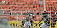 ATENÇÃO EDITOR: FOTO EMBARGADA PARA VEÍCULOS INTERNACIONAIS - SÃO PAULO, SP, 25 DE NOVEMBRO DE 2012 - CAMPEONATO BRASILEIRO - PALMEIRAS x ATLETICO GOIANIENSE: Patrik Vieira comemora gol durante partida Palmeiras x Atletico Goianiense, válida pela 37ª rodada do Campeonato Brasileiro no Estádio do Pacaembú. FOTO: LEVI BIANCO - BRAZIL PHOTO PRESSieira comemora gol durante partida Palmeiras x Atletico Goianiense, válida pela 37ª rodada do Campeonato Brasileiro no Estádio do Pacaembú. FOTO: LEVI BIANCO - BRAZIL PHOTO PRESS