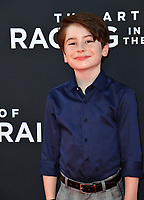 "LOS ANGELES, USA. August 02, 2019: Paxton Booth at the premiere of ""The Art of Racing in the Rain"" at the El Capitan Theatre.<br /> Picture: Paul Smith/Featureflash"