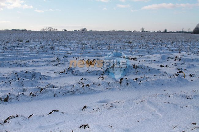 Frozen field's of potatoes IFA Vice Chairperson Thomas Carpenter whows Fina Fail TD the devestation..Picture Fran Caffrey/Newsfile.ie