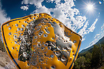 Bullet riddled yellow diamond traffic sign along a mountain road on the west slope of the Wasatch Plateau, Utah