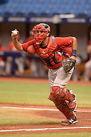 Boston Red Sox catcher Alixon Suarez (25) during an Instructional League game against the Tampa Bay Rays on September 25, 2014 at Tropicana Field in St. Petersburg, Florida.  (Mike Janes/Four Seam Images)