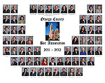 Otsego County Bar Association Composite 2011-12
