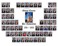 Otsego County Bar Association Composite 2011-12