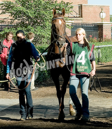 Diamante de Fuego before The Endine Stakes at Delaware Park on 10/13/12