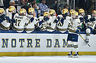 January 25, 2020; Charlie Raith (29) celebrates with teammates on the bench after a goal at Compton Family Ice Arena. (Photo by Matt Cashore/University of Notre Dame)