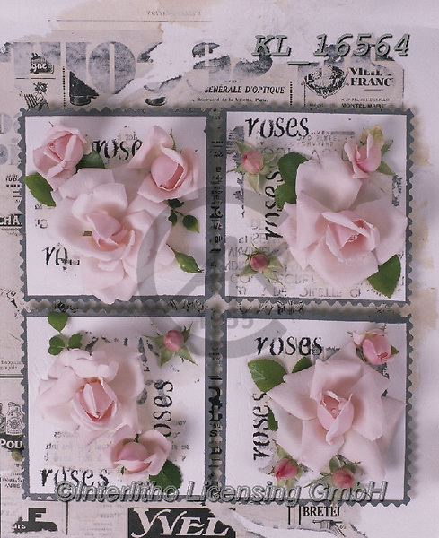 Interlitho-Alberto, FLOWERS, BLUMEN, FLORES, photos+++++,roses,KL16564,#f#, EVERYDAY ,napkins