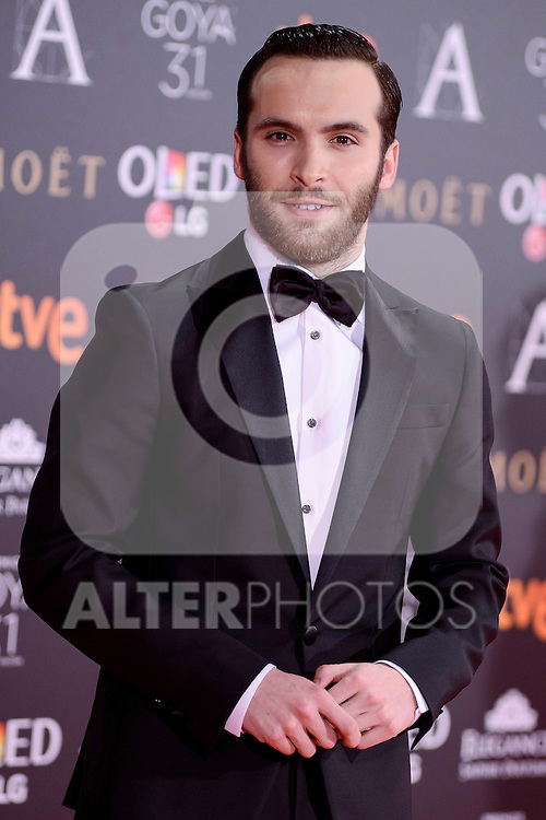 Ricardo Gomez attends to the Red Carpet of the Goya Awards 2017 at Madrid Marriott Auditorium Hotel in Madrid, Spain. February 04, 2017. (ALTERPHOTOS/BorjaB.Hojas)