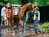 Followyourdreamm at Delaware Park on 7/7/16