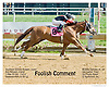 Foolish Comment winning at Delaware Park on 9/20/12