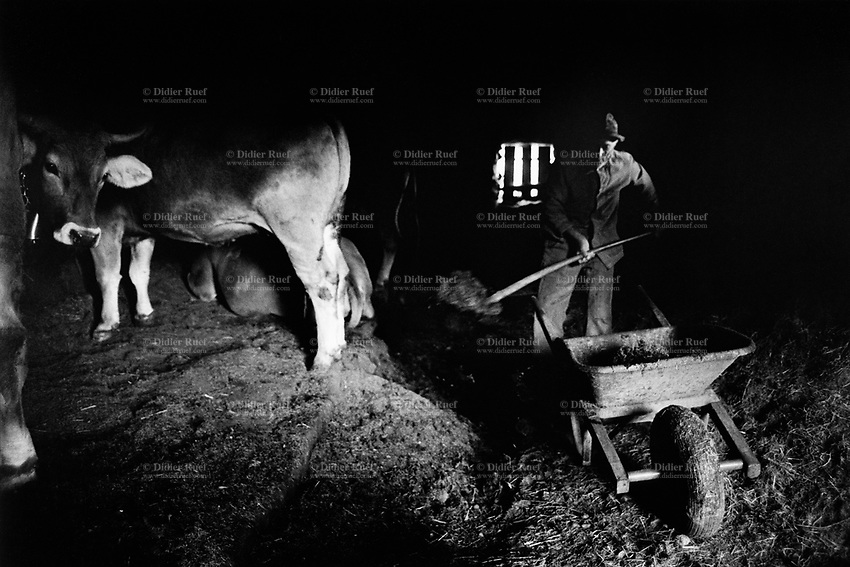Switzerland. Canton Graubunden. Viano. Poschiavo valley. Luigi Merlo uses a shovel to clean the manure from the cows' stable. Manual labor. Labour force. Swiss alpine farmers. Alps mountains peasants.  © 1994 Didier Ruef