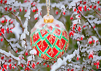 Christmas ornament in snow/ice with red berries.