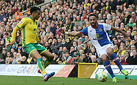 Photographer David Shipman/CameraSport<br /> <br /> The EFL Sky Bet Championship - Norwich City v Blackburn Rovers - Saturday 11th March 2017 - Carrow Road - Norwich<br /> <br /> World Copyright &copy; 2017 CameraSport. All rights reserved. 43 Linden Ave. Countesthorpe. Leicester. England. LE8 5PG - Tel: +44 (0) 116 277 4147 - admin@camerasport.com - www.camerasport.com