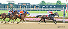 Motor City winning at Delaware Park on 7/29/15