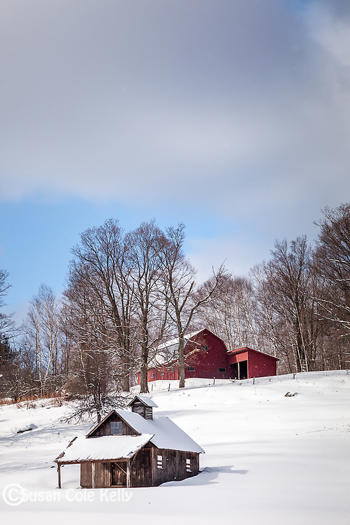 A maple sugar house in Peacham, Vermont, USA