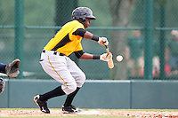 GCL Pirates shortstop Alen Hanson #31 lays down a bunt during a game against the GCL Braves at Disney Wide World of Sports on June 25, 2011 in Kissimmee, Florida.  The Pirates defeated the Braves 5-4 in ten innings.  (Mike Janes/Four Seam Images)
