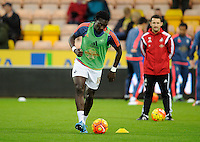 Bafetimbi Gomis of Swansea City during the Barclays Premier League match between Norwich City and Swansea City played at Carrow Road, Norwich on November 7th 2015