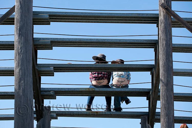 Cowgirls with matching tattoos sitting in grandstand.   Mareeba Rodeo, Mareeba, Queensland, Australia