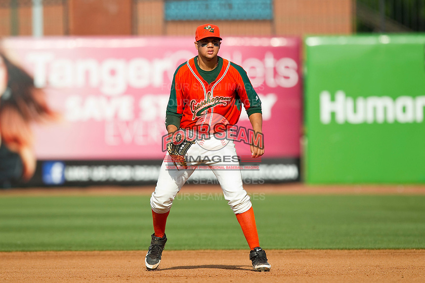 Greensboro Grasshoppers first baseman Viosergy Rosa (35) on defense against the Delmarva Shorebirds at NewBridge Bank Park on May 26, 2013 in Greensboro, North Carolina.  The Grasshoppers defeated the Shorebirds 11-2.  (Brian Westerholt/Four Seam Images)