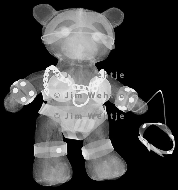 X-ray image of an S&M bear (white on black) by Jim Wehtje, specialist in x-ray art and design images.