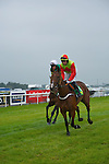 Ladies Day at the Listowel Races on Friday