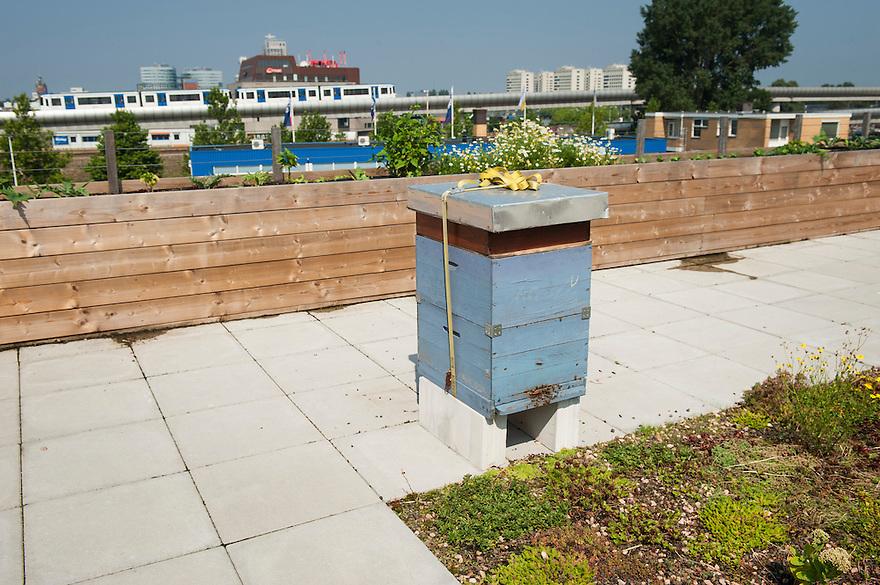 Nederland, Amsterdam, 23 aug 2013<br /> Daktuin op het dak van een kantoorgebouw Zuidpark in Amsterdam-oost. In dit gebouw zitten allemaal hippe bedrijven. Op het dak zijn gedeeltelijk tegels vervangen door sedum. Ook zijn er plantenbakken neergezet waar voornamelijk groenten in worden geteeld. De stadsmens kan zo een beetje voeling houden met hoe voedsel ontstaat. In de zomer is het bovendien een prettige plek om te lunchen of te vergaderen.<br /> Ook staat er een bijenkast met een bijenvolk om de eigen tuin maar ook de omgeving te bevruchten. Alhoewel het op het land slecht gaat met de bijen mede vanwege het gebruik van pesticiden doen bijen in de stad het goed. Een bijenvolk op een stadsdak is helemaal zo gek nog niet. <br /> Foto(c): Michiel Wijnbergh
