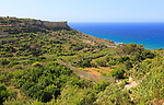 Coastal scenery San Blas bay, island of Gozo, Malta