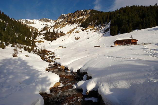 Alpine slopes under winter snow near Bort - Grindelwald, Swiss Alps, Switzerland
