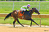 Uncle Leo winning at Delaware Park on 7/27/16
