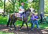 Miss Modela in The International Ladies FEGENTRI  race at Delaware Park on 6/13/16