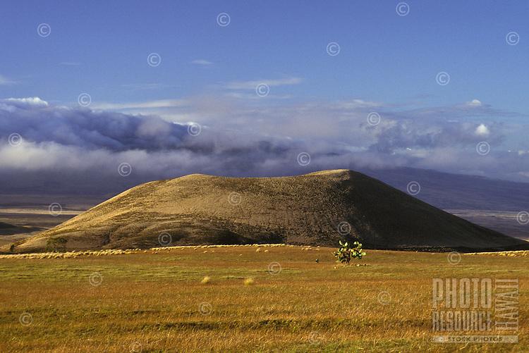 Slopes of Mauna Kea volcano, Big Island