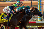 """DEL MAR, CA  AUGUST 24: #7 Catalina Cruiser, ridden by Flavien Prat, just edges out  #4 Giant Expectations, ridden by Drayden Van Dyke, to win the Pat O'Brien Stakes (Grade ll) """"Win and You're In Breeders' Cup Dirt Mile Division"""" on August 23, 2019 at Del Mar Thoroughbred Club in Del Mar, CA.  ( Photo by Casey Phillips/Eclipse Sportswire/CSM)"""