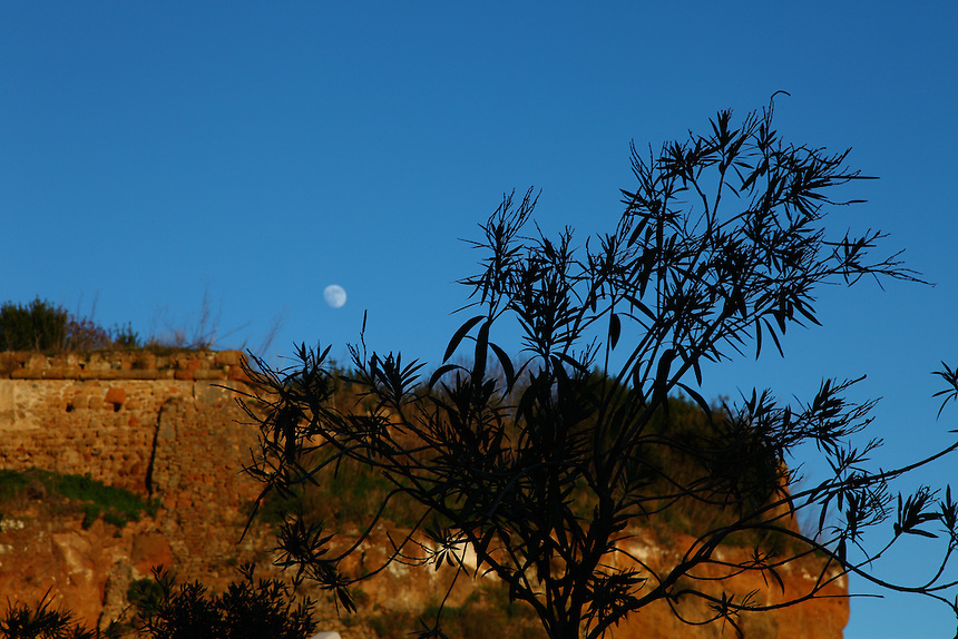 A view of the ancient wall one faces when entering in the old part of the small town of Ardea in the late evening, with a green tree in the foreground and a visible moon in the background. Digitally Improved Photo.