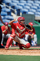 Philadelphia Phillies catcher Freddy Francisco (6) during a Florida Instructional League game against the New York Yankees on October 12, 2018 at Spectrum Field in Clearwater, Florida.  (Mike Janes/Four Seam Images)