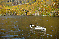 Autumn color and flooded boat in lake Ågvatnet, Å I Lofoten, Moskenesøy, Lofoten islands, Norway