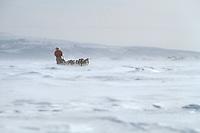 L.Barve Mushing high Wind near Shaktoolik '90 Iditarod