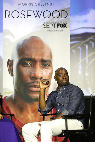 NEW ORLEANS, LA - JULY 3: Actor Morris Chestnut from the new Fox show Rosewood attends the 2015 Essence Festival at the Ernest N. Morial Convention Center on July 3, 2015 in New Orleans, Louisiana. Credit: PGDH/MediaPunch